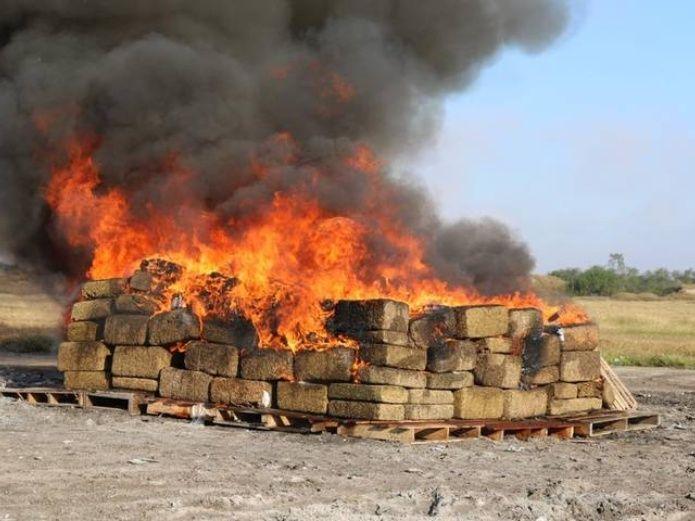 Destruyen más de tres toneladas de narcóticos y objetos robados en Veracruz
