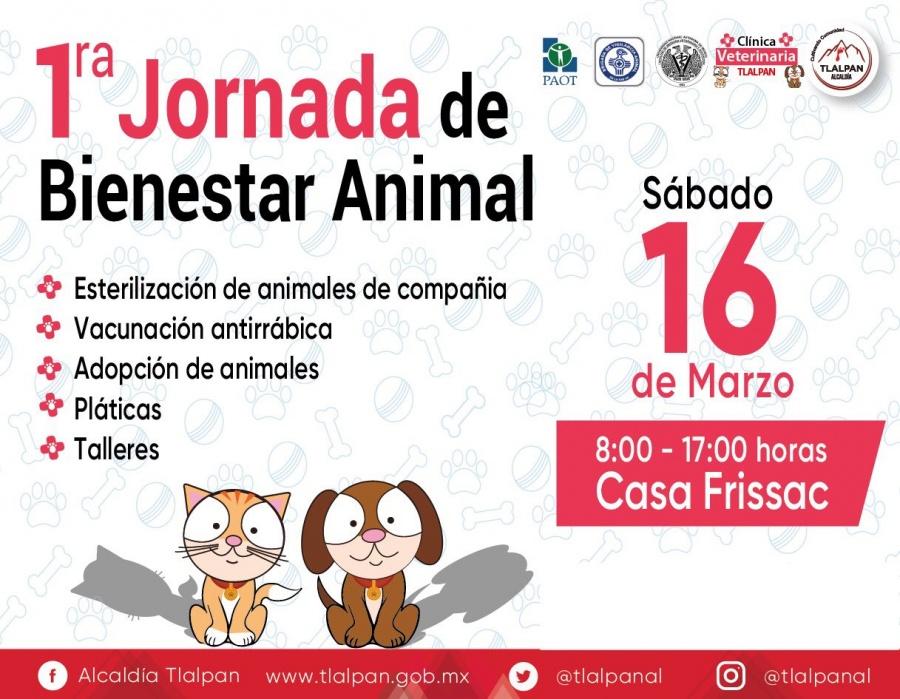 Tlalpan realizará la Primera Jornada de Bienestar Animal