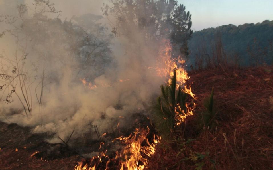 Se registra incendio en pastizales de Naucalpan