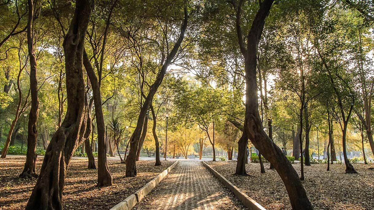 En la mira del Gobierno capitalino, litigios por el Bosque de Chapultepec