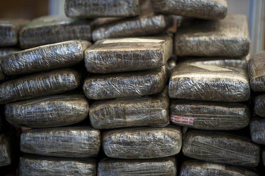 Decomisan más de 4 mil kilos de mariguana en Baja California