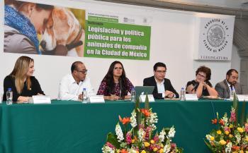 El Congreso de la Ciudad de México fortalecerá la legislación en favor de los animales