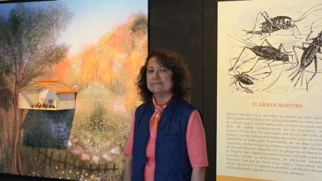 Cantan grillos en el Museo de Historia Natural y Cultura Ambiental