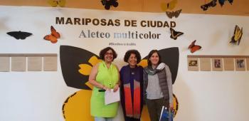 Tlalpan presenta exposición Mariposas de la Ciudad