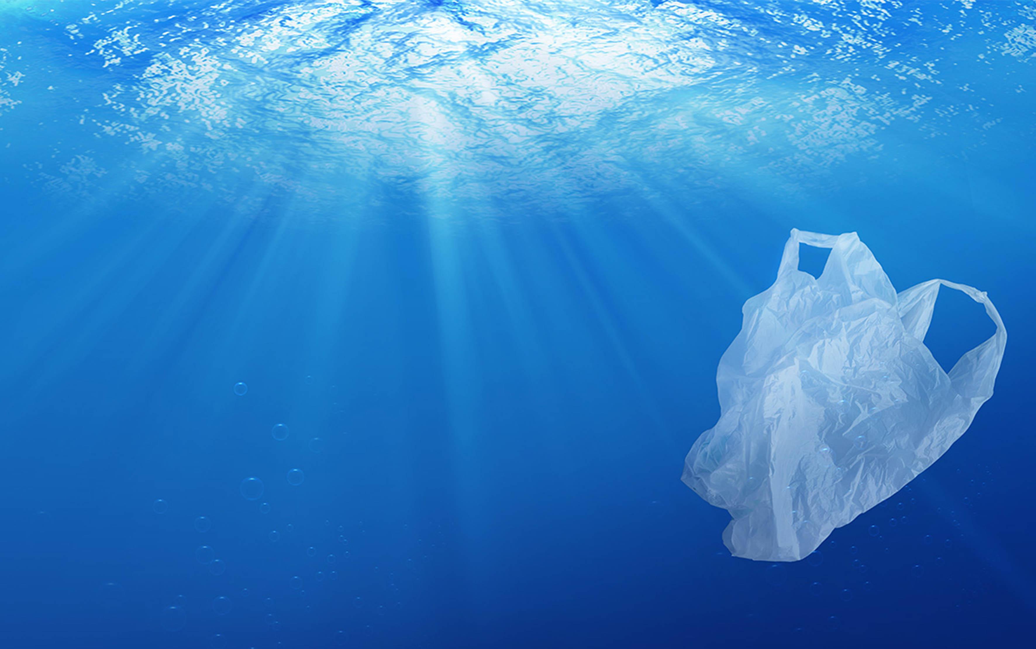 Más de 13 Millones de Toneladas de Desechos Plásticos ingresan cada año a los Océanos