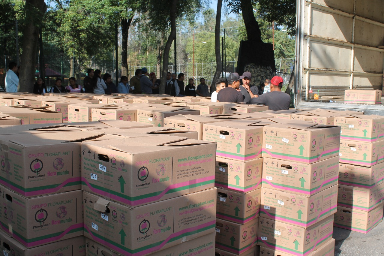 Benefician a Campesinos Xochimilcas con entrega de 52 Mil Plántulas de Nochebuenas