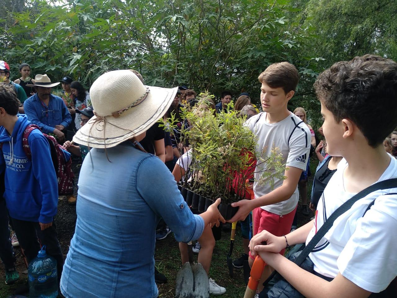 Estudiantes y Alcaldía se suman para reforestar cerro afectado por incendio