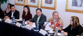Pendiente, la Tipificación del Delito de Violencia Política contra las Mujeres: Peralta Hernández