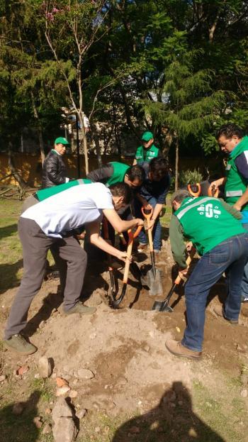 Alcaldía de Coyoacán llevó a cabo el Reto Verde