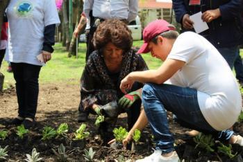 Tlalpan y Sedema siembran árboles por Reto Verde