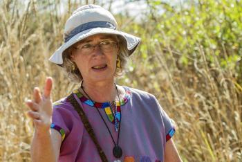 La conservación de la Reserva Ecológica del Pedregal de San Ángel a cargo de la UNAM