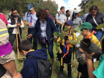 Tlalpan reforesta suelo de conservación