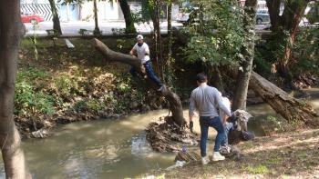 Asociaciones Pro Ambientalistas y ciudadanos trabajaron en conjunto en la recuperación del Río Magdalena