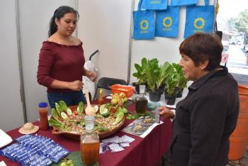 Impulsa La Magdalena Contreras desarrollo de sociedades cooperativas