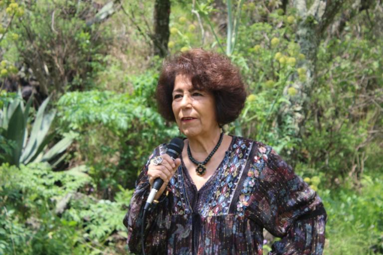 Tlalpan reforesta el Parque Ecológico de la CDMX
