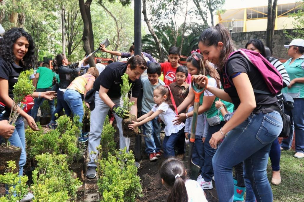 Alcaldía Cuauhtémoc realiza jornada de revegetación en Tlatelolco