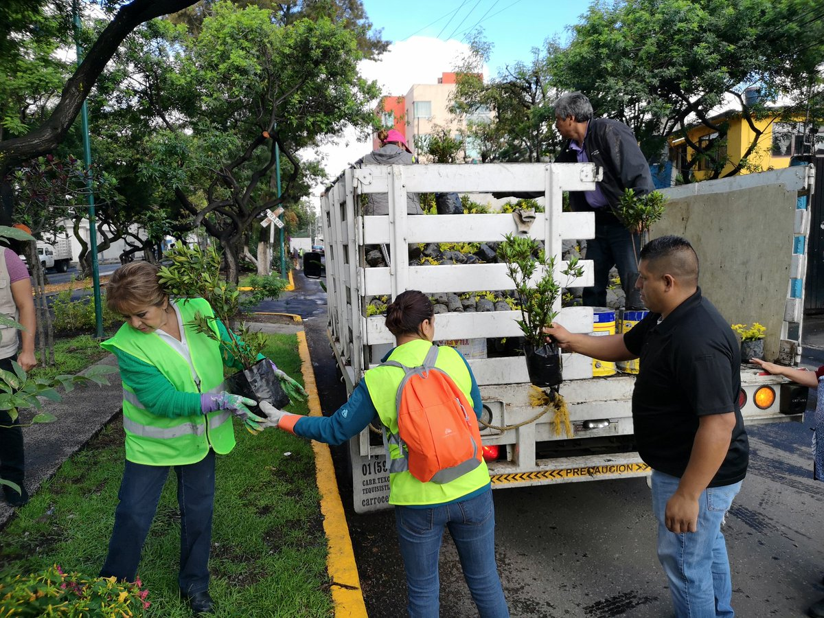 Campaña de Reforestación en San Francisco Xocotitla