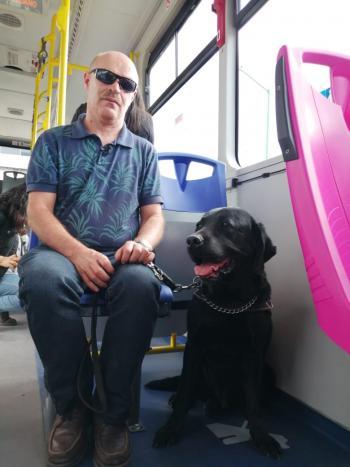 Realiza RTP actividad de reconocimiento de unidades con personas con discapacidad