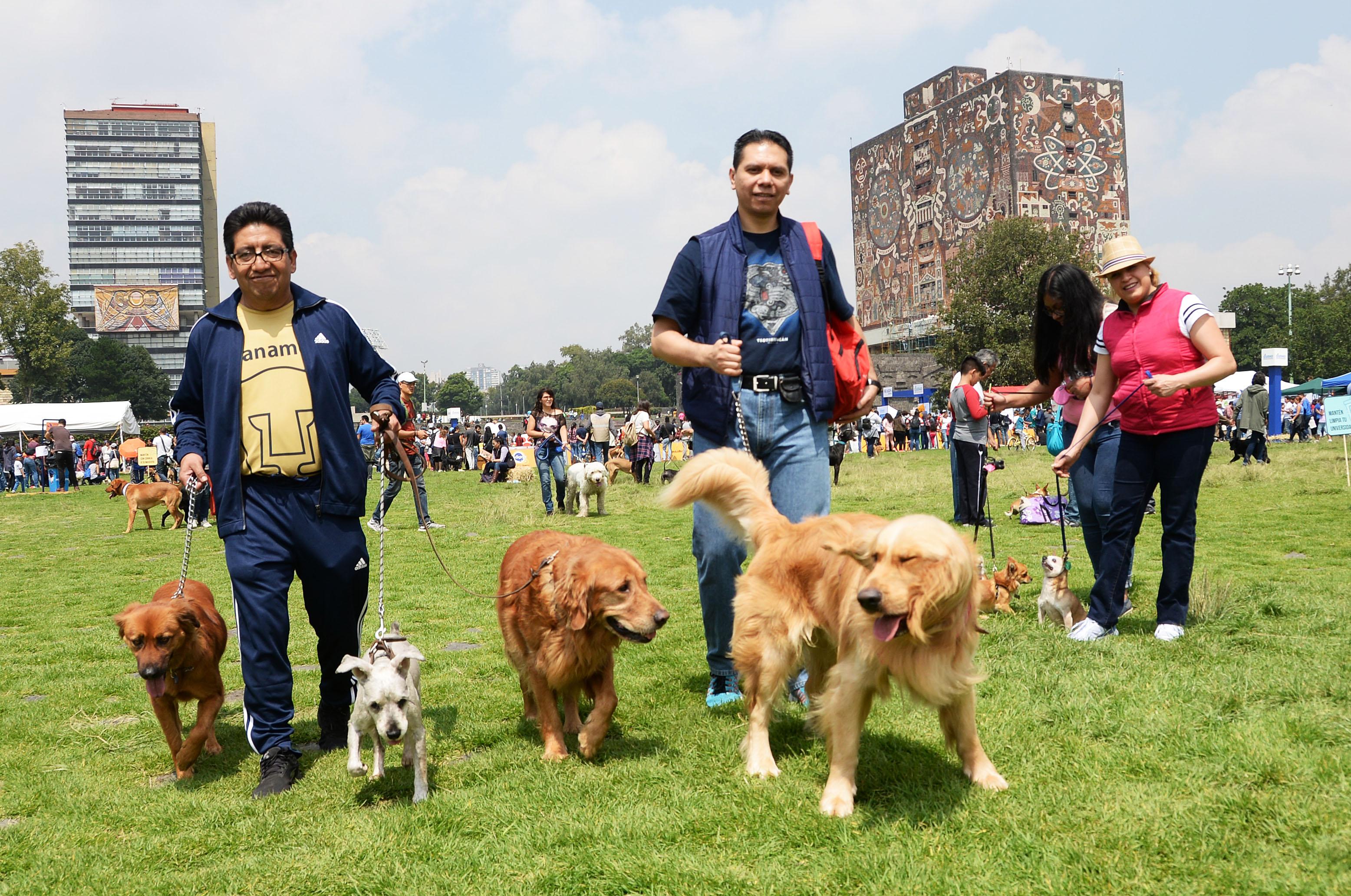 Jornadas de Bienestar Animal en las Islas de Ciudad Universitaria