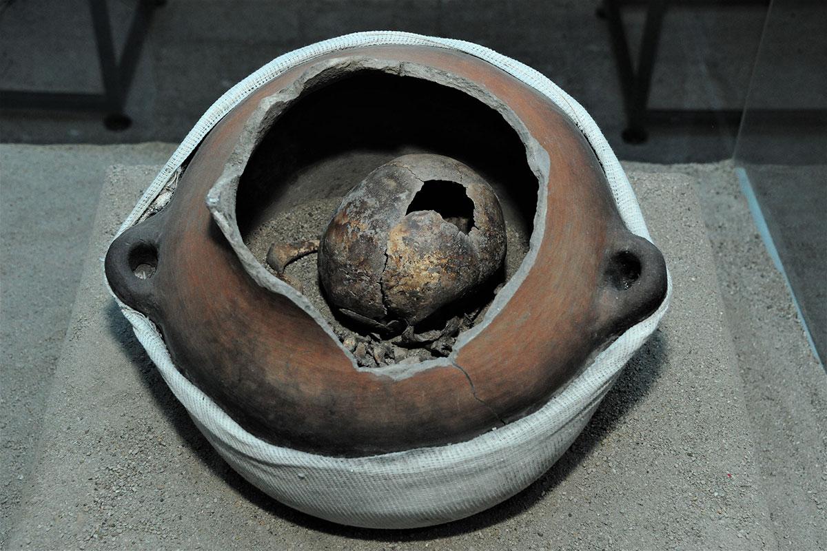 Exposición revela las antiguas costumbres funerarias de Tlatelolco