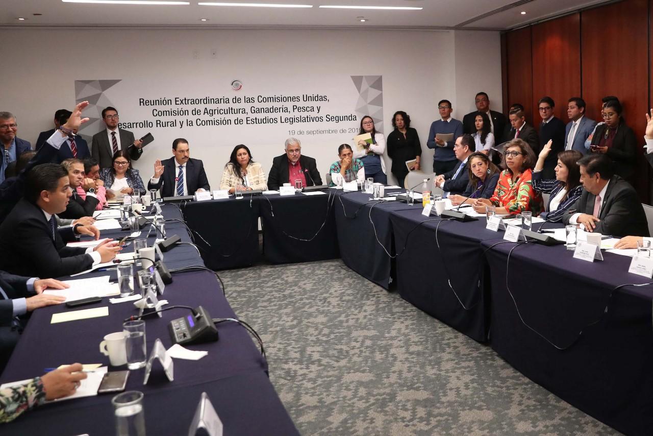 Aprueban comisiones Ley Federal para el Fomento y Protección del Maíz Nativo
