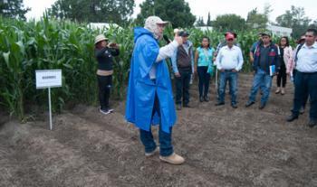 Think tank de Naciones Unidas reconoce a MasAgro por generar información y tecnologías de vanguardia asequibles para productores