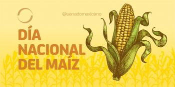 El 29 de septiembre de cada año será el Día Nacional del Maíz