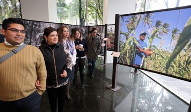 """La Secretaría de Economía presenta exposición fotográfica """"La Milpa"""""""