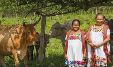 A un año de gobierno, México impulsa nuevo modelo para el rescate del campo, la autosuficiencia y desarrollo del sector rural