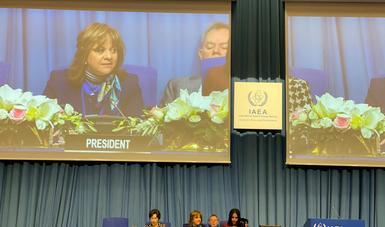 Preside subsecretaria Delgado la sesión para nombrar a nuevo director general del OIEA y se reúne con altos funcionarios de la ONU en Viena