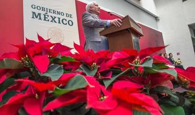 Lanza Agricultura Proyecto Nacional de Plantas Nativas para recuperar y promocionar el valor de 60 especies originarias de México