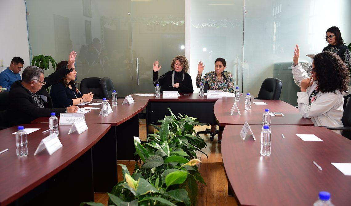 La Comisión de Igualdad de Género a favor de las candidaturas de personas con discapacidad a cargos de elección popular