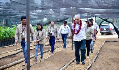 En Hidalgotitlán, presidente López Obrador anuncia construcción de camino a Uxpanapa con mano de obra local