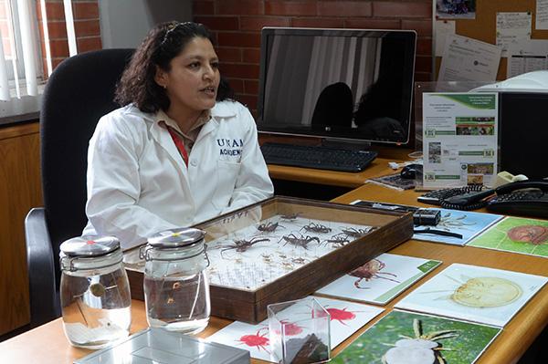 Cuenta UNAM con la Colección Nacional de Ácaros más importante