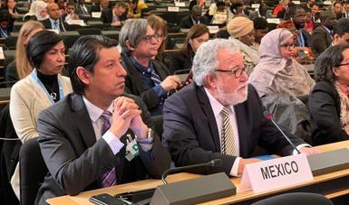 Participación de México en el Primer Foro Mundial sobre Refugiados