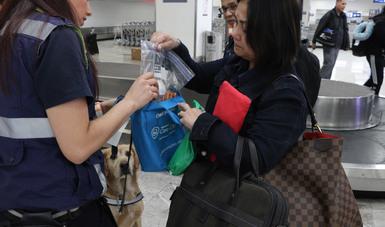 Inspecciona Agricultura más de 921 mil equipajes durante operativo vacacional de invierno 2019