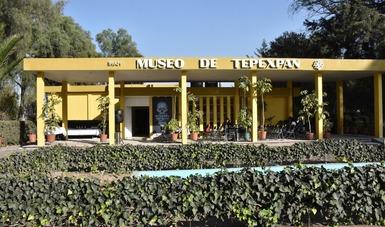 Museo de Tepexpan reabre con exposición sobre la evolución humana