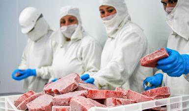 Gestiona Agricultura nuevos mercados para cárnicos y productos vegetales mexicanos