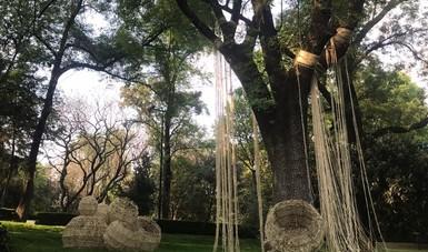 Llega el vigor cultural de Aguascalientes al Complejo Cultural Los Pinos