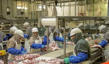 La producción de carne de res en México mantiene un crecimiento anual sostenible del 2.5 %: Agricultura