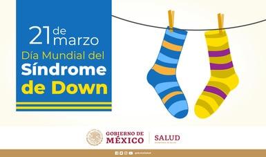 Trastornos del desarrollo intelectual, como síndrome de Down, requieren políticas públicas integrales: Alcocer Varela