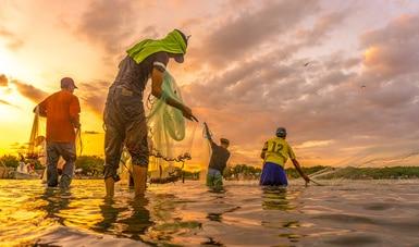 Adelantará Gobierno de México incentivos del Componente de Apoyo para el Bienestar de Pescadores y Acuicultores (Bienpesca)