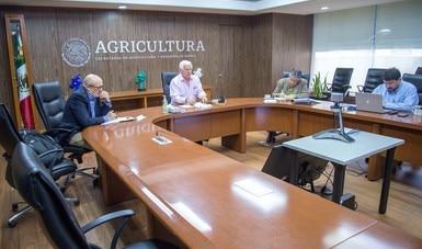 Revisan Agricultura y cadena productiva pecuaria acciones para garantizar producción y abastecimiento de proteína animal