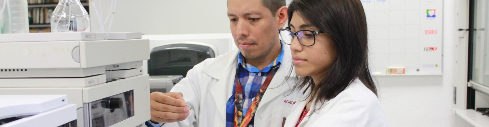 Evalúa IPN acción del orégano mexicano contra hongos y bacterias