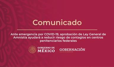 Ante emergencia por COVID-19 aprobación de Ley General de Amnistía ayudará a reducir riesgo de contagios en centros penitenciarios federales
