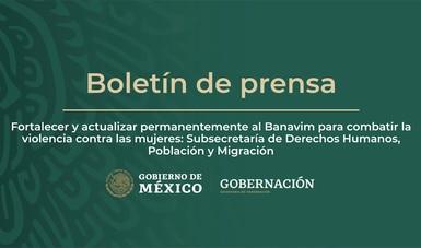 Fortalecer y actualizar permanentemente al Banavim para combatir la violencia contra las mujeres: Subsecretaría de Derechos Humanos