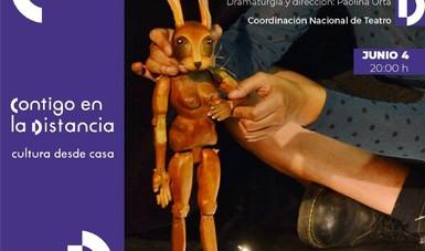 El diálogo de cuatro poetas se presenta en la obra Relámpagos. Mujeres latinoamericanas