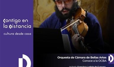 Francisco Ladrón de Guevara, violinista de la OCBA, charlará en tiempo real de su trayectoria musical