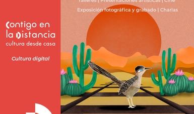 Alas Sobre Rieles celebra la diversidad y riqueza de la biodiversidad en México
