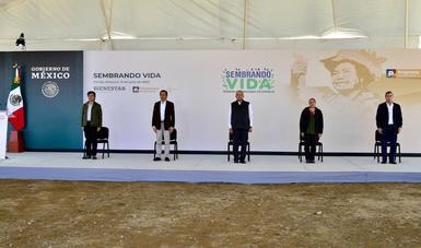 Presenta Secretaría de Bienestar avances de Sembrando Vida en Veracruz